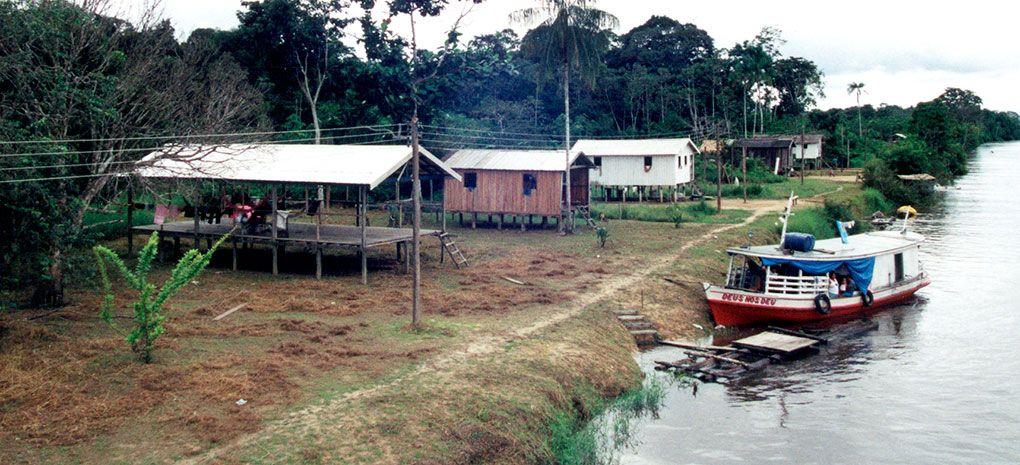 Parana Floresta River Banks