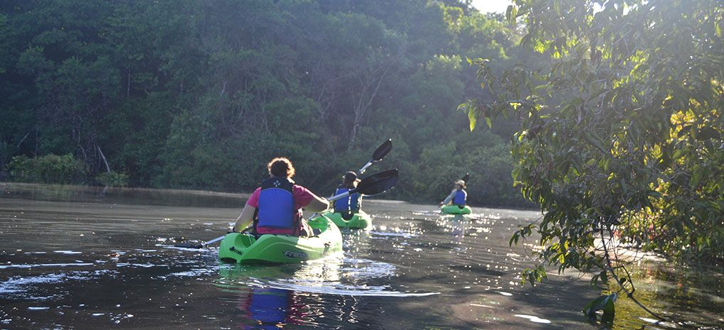 Three Kayakers on the Amazon