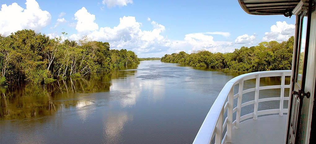 View of the Amazon Rainforest from the Motor Yacht Tucano