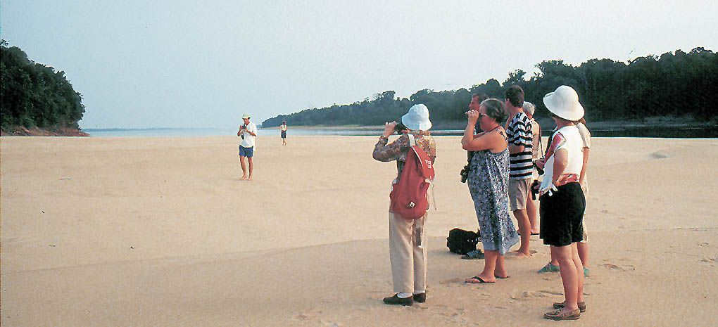Cruise Passengers Exploring Beach Rio Negro in the Amazon Rain Forrest