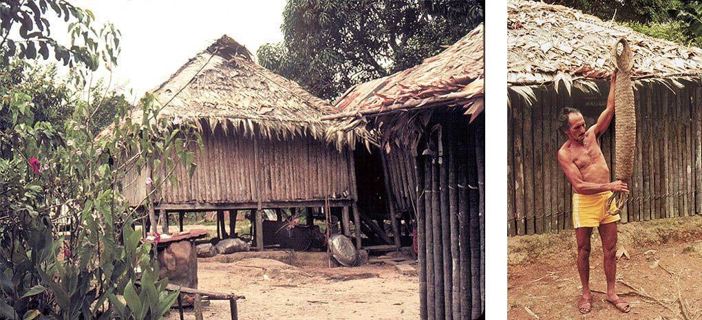 Amazon Homesites / Huts