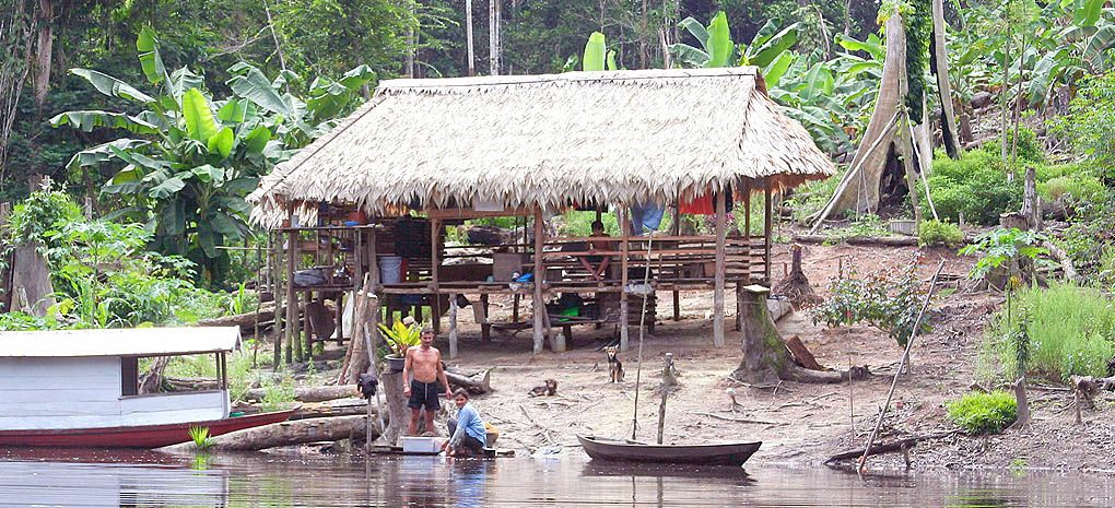 Roça Amazon River Cruise and Rainforest Tour