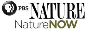 PBS Nature
